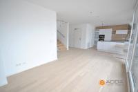 Beigefarbenes Wohnzimmer  Bilder & Ideen  COUCH