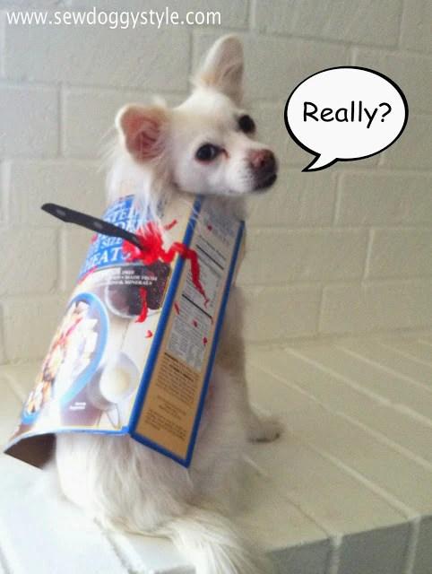 Top 5 Easy Diy Dog Halloween Costumes Makati Dog And Cat Hospital