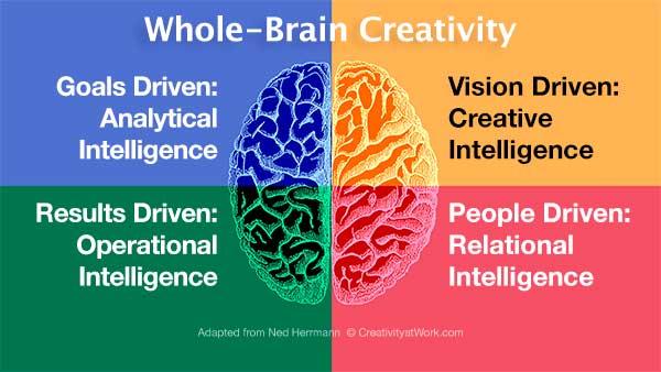 whole-brain creativity