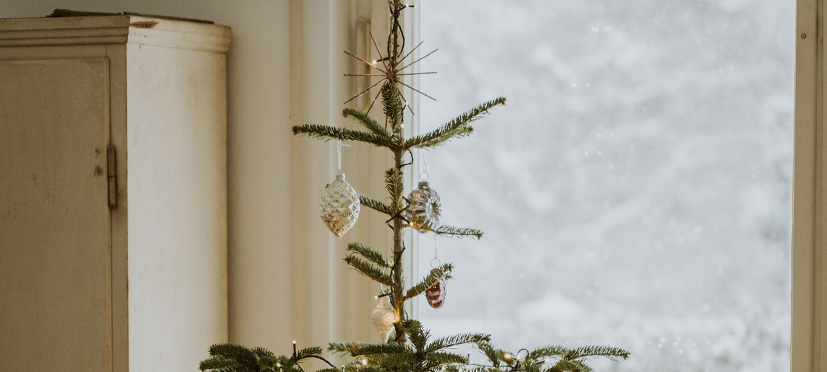 Year of the Charlie Brown Christmas Tree, by Christine ...