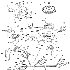 Evinrude 115 Wiring Diagram How Do I Draw A Family Tree Ignition System 1996 Outboards E115tleda