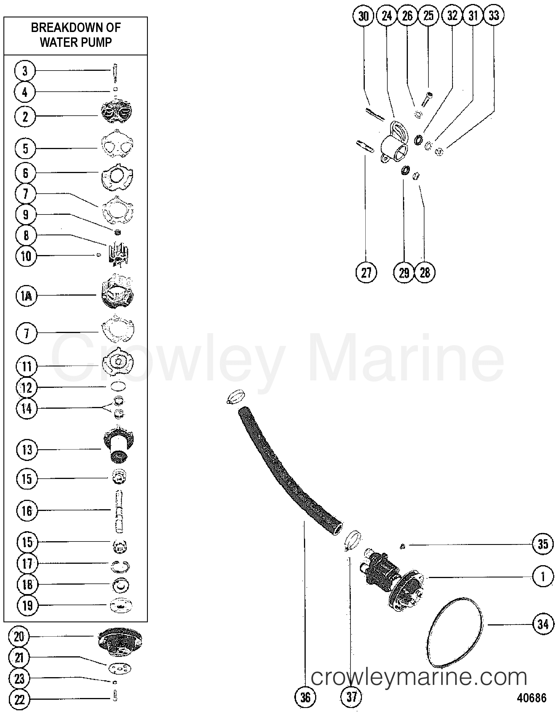 Water Pump Assembly Inboard
