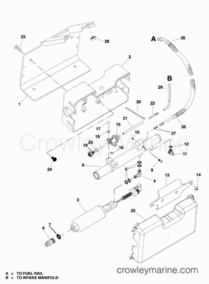 Scorpion Wiring Diagrams Spider Diagram wiring diagram