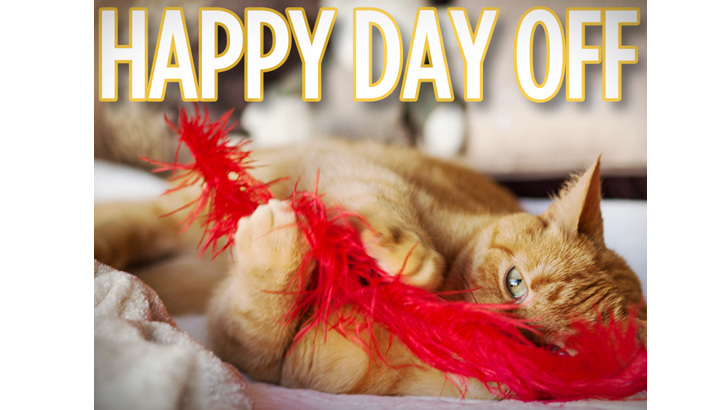 Happy Happy Day Off Hallmark Channel