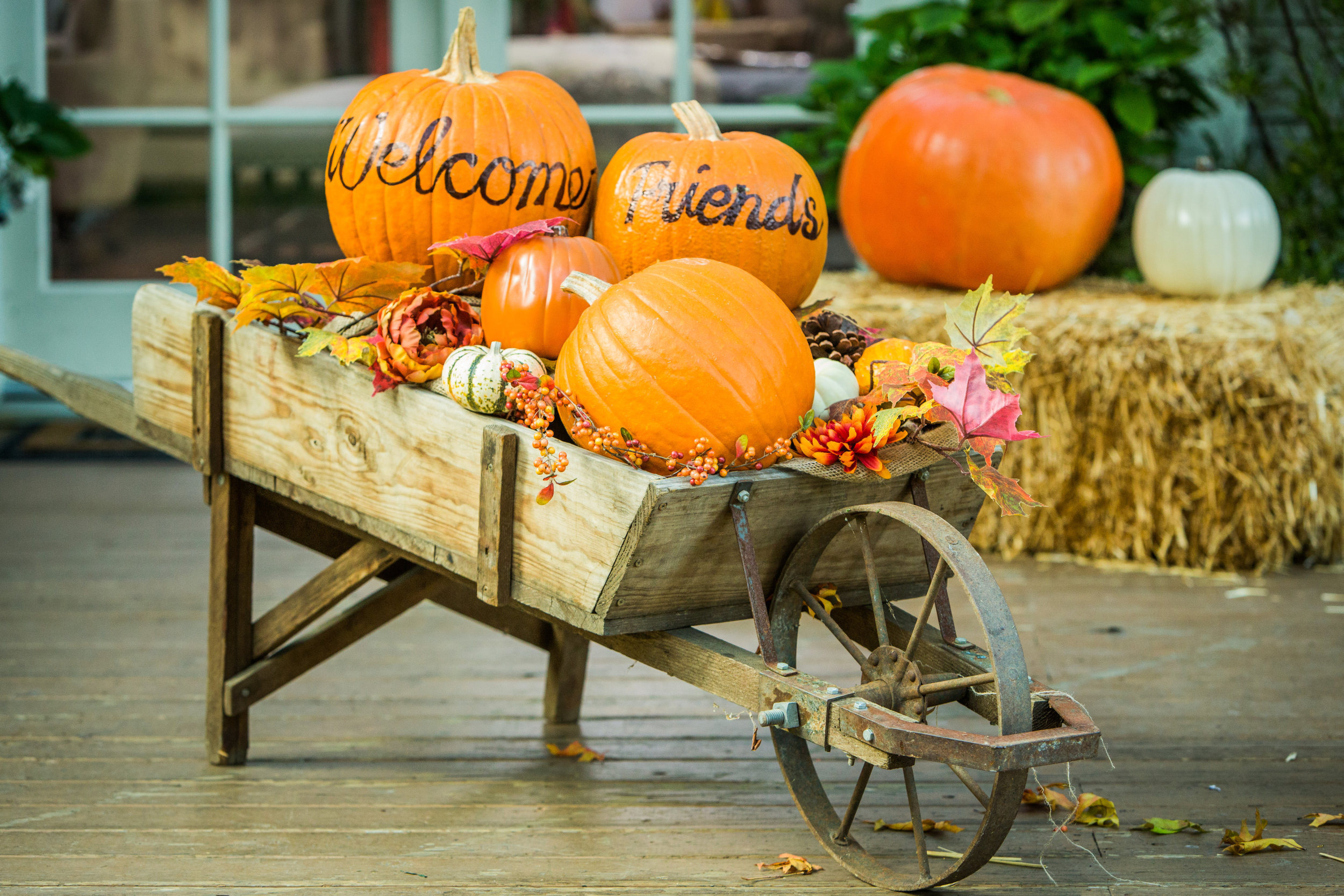 Live Wallpaper Fall Leaves How To Fall Welcome Wagon Home Amp Family Hallmark Channel
