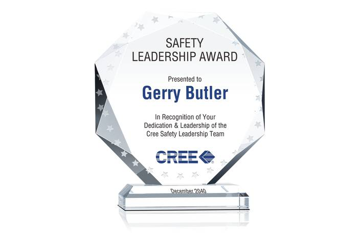 Octagon Safety Recognition Plaque