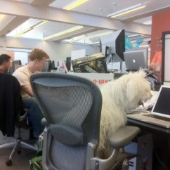 Aeron Desk Chair Full Grain Leather And Ottoman Mark Zuckerberg's Dog Blogs From A Macbook Pro At Facebook Hq [pic] | Cult Of Mac
