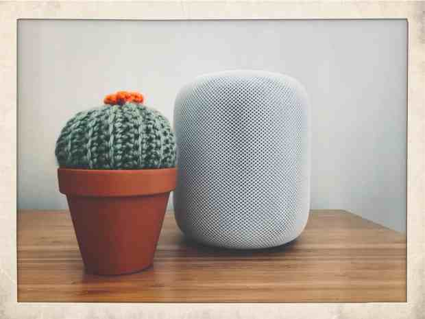 Apple debuts HomePod in India at its cheapest price yet