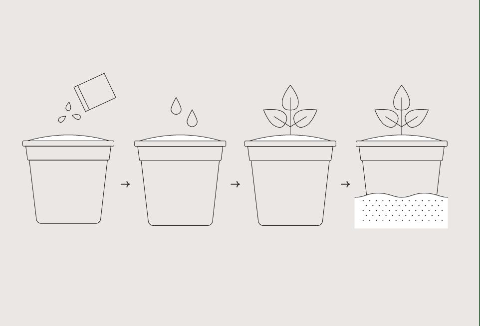 Garden Drop-In Kit - Pumpkin