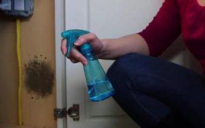 Elimine completamente as manchas de mofo com um produto caseiro muito comum