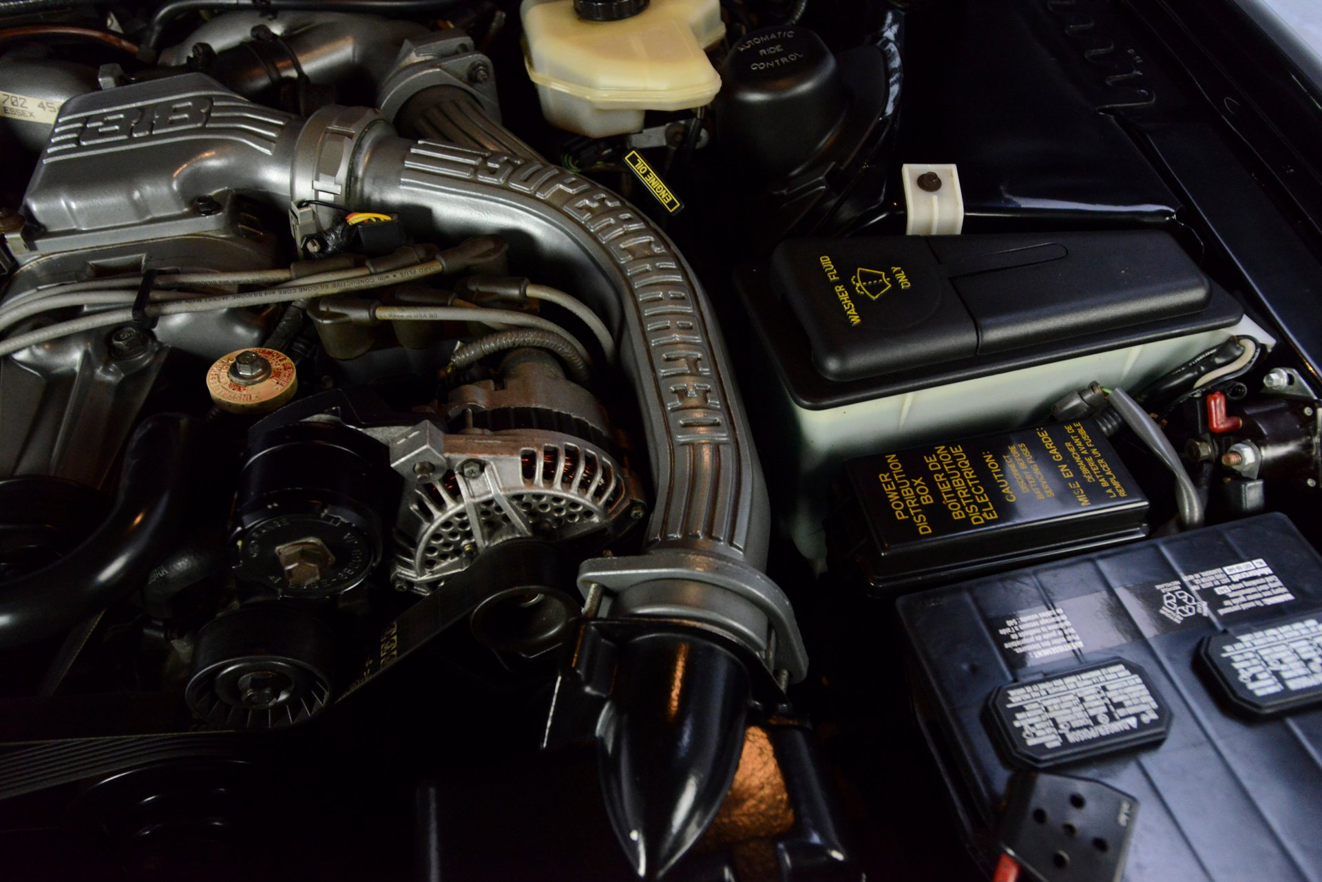 hight resolution of  for sale 1989 ford thunderbird