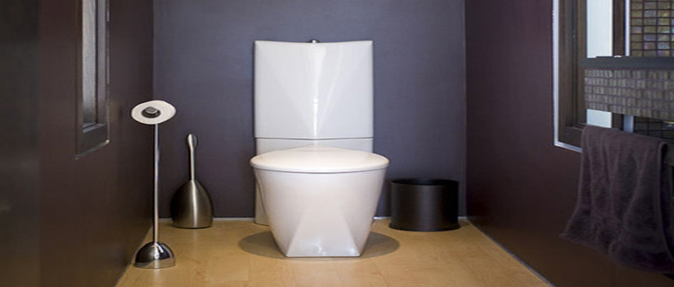 peinture wc idees couleur pour des wc