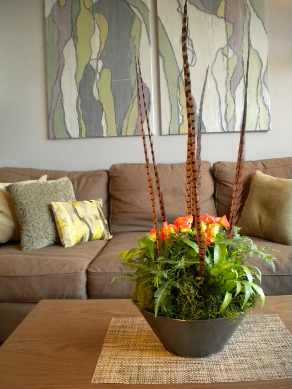 Indoor Hanging Plant Ideas