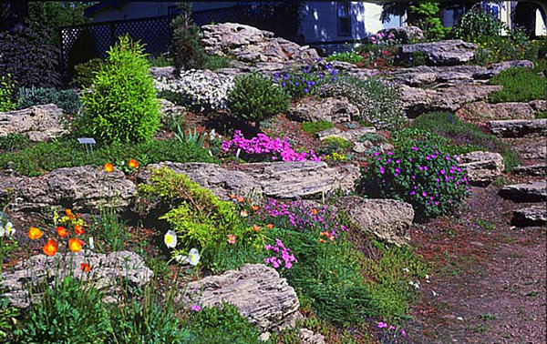 fabulous rock garden design