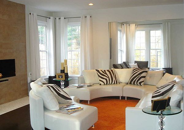 zebra stripes pillows for a living room