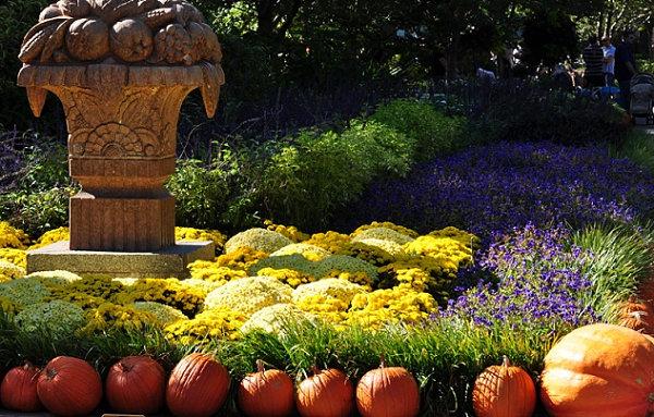 garden pathway ideas fall