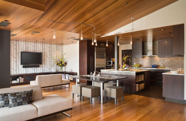 modern living room track lighting next home rugs gorgeous ideas for the contemporary view in gallery pendant lights used as part of dining area and kitchen