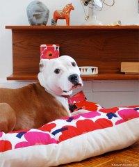 Floral floor pillow dog bed DIY - Decoist