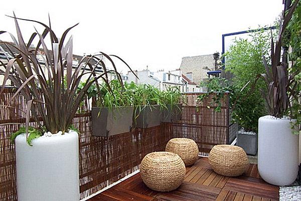 Balcony Garden Privacy Ideas Photograph Small Balcony Desi