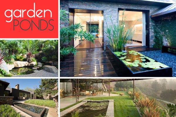contemporary garden pond design