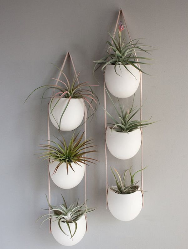 Hanging Planters And Container Garden Ideas For Indoors