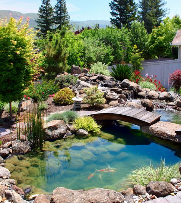 natural inspiration koi pond design