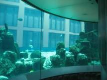 Elevator Aquarium Germany