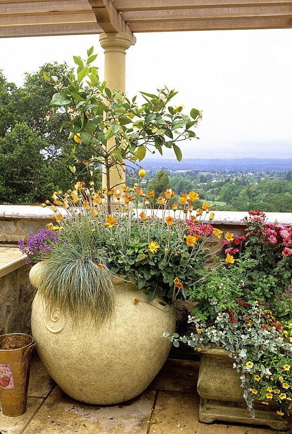 balcony gardens prove space