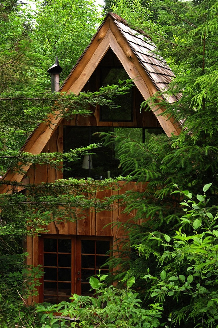 This Amazing Forest House Was Built For Just 11000 With