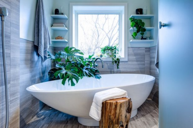 Image result for bathroom with plants