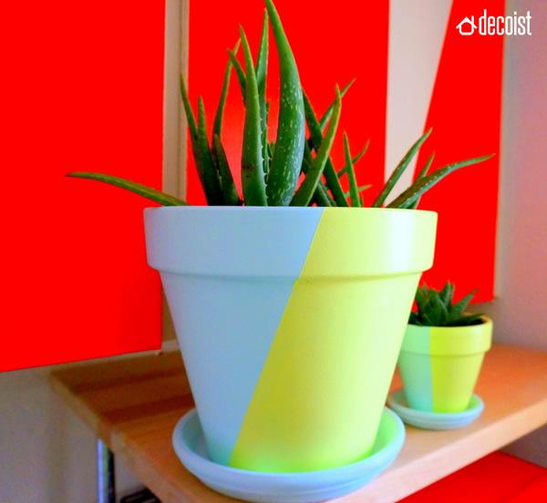 Twotone Painted Pots Fancy DIY Project