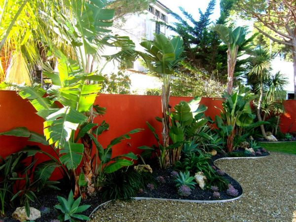 beautiful gardens with tropical