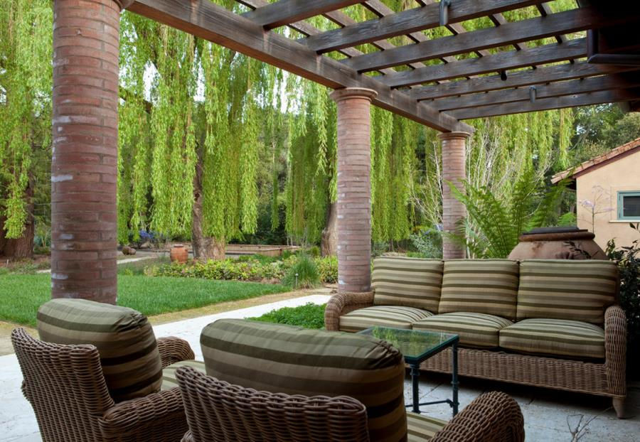 Weeping willow beside an outdoor patio