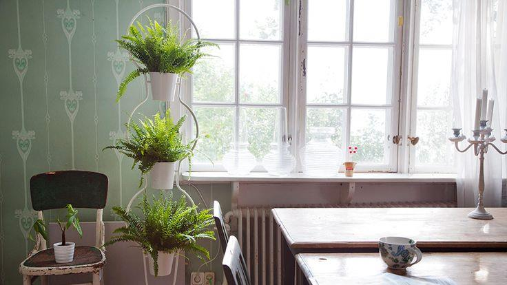 Plant Stand Style with a Modern Twist