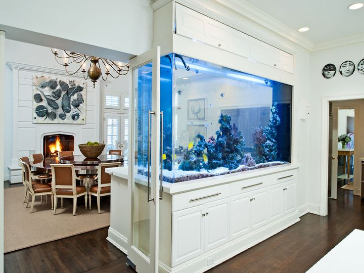 modern style of divider counter in living room and kitchen yellow blue brown rooms 8 extremely interesting places to put an aquarium your home view gallery huge fish tank separating dining from