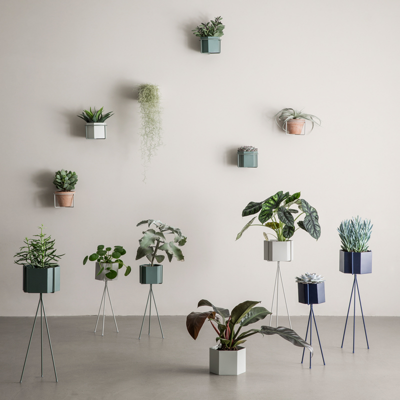 Metal Wall Plant Holders