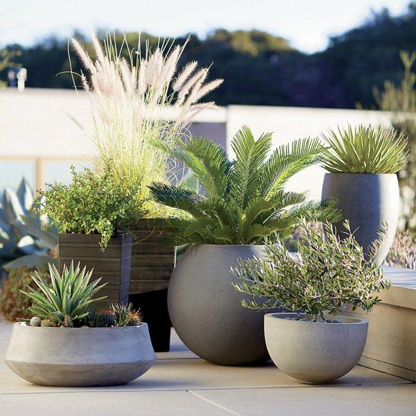 transform yard garden