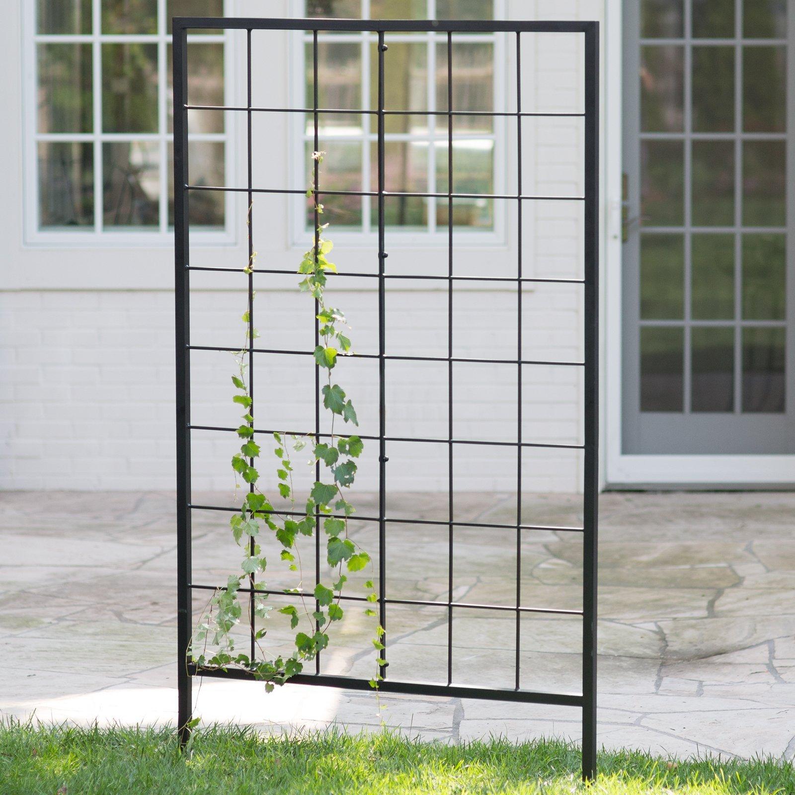 Garden Wall Trellis Metal
