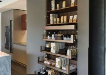 pantry for kitchen cabinets at home depot finding the right your styles size and storage view in gallery double floor to ceiling pantries flank refrigerator this transformed modern from edmond bath