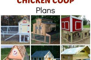 100 Diy Chicken Coop Plans Ideas Handy Homemade