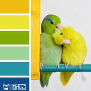 Analogous Color Schemes Idolza