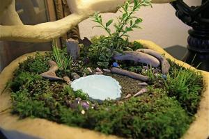Beach Mini Garden Guru Your Miniature