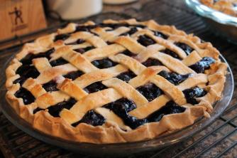 Blueberry Pie Recipe Dishmaps
