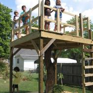 Building Tree House Designs Housesimple