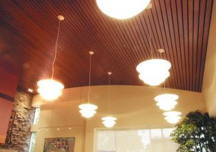 Cgc True Wood Ceiling Panels