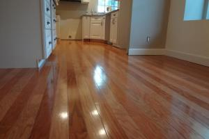 Clean Laminate Floors Steam Mop Best