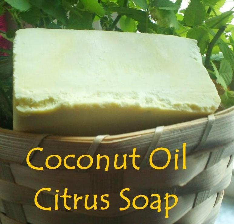 Coconut Oil Citrus Soap Wise Wife