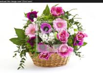 Colorful Flowers Basket Yayimages