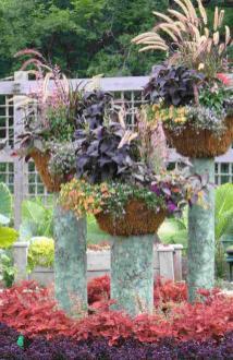 Container Gardening Blog Rutgers Landscape Nursery