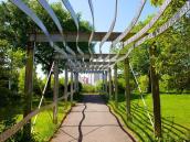 Contemporary Uses Arches Pergolas